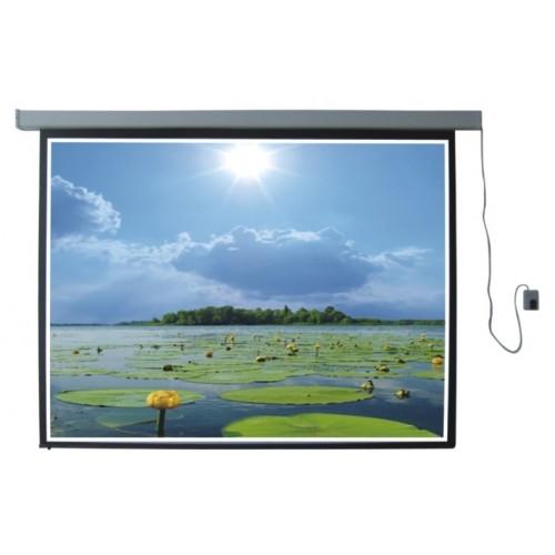 Màn chiếu điện Exzen 300 inch H6xW4,5m