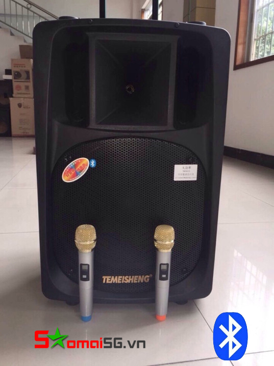 Loa Kéo Di Động Temeisheng DP2398 Pro 5 tấc